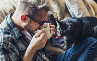 Кофе вредно пить