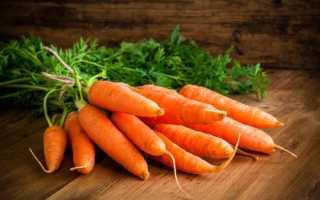 Чем полезна морковь для детей