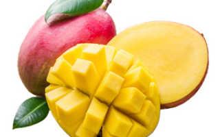 Манго фрукт полезные свойства и вред