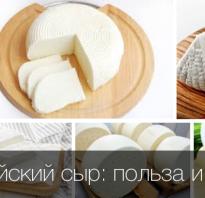 Чем полезен адыгейский сыр