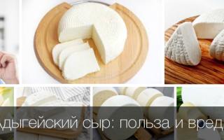 Полезен ли сыр адыгейский