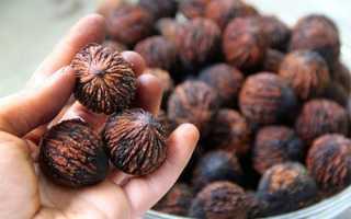 Черный орех полезные свойства орех