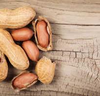 Чем полезны орехи арахис
