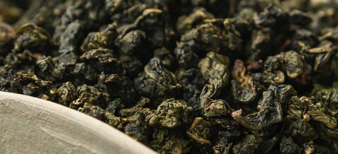 Молочный чай улун полезные и вредные свойства