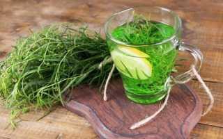 Тархун трава полезные свойства и применение