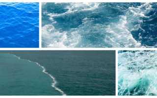Морская вода чем полезна