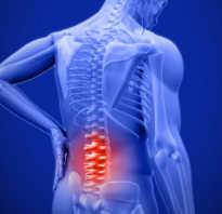 Упражнения для спины полезные