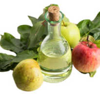 Уксус яблочный полезен ли