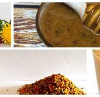 Мед с пыльцой полезные свойства