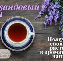 Чай с лавандой чем полезен